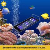 Luz del acuario de Dimmable LED del filón coralino del control de Dimmable WiFi de la salida del sol y de la puesta del sol