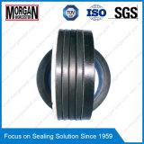 Verbindingen van de Verpakking van de Staaf Seal/V van de Cilinder van de Reeks van S de de Hydraulische/Verbinding van de Chevron