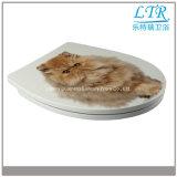 Siège des toilettes en céramique de carte de travail de belle de chat fin de doux