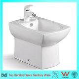 Badezimmer-keramisches Toilettebidet-Feld