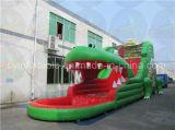Trasparenza gonfiabile gigante del coccodrillo, trasparenza di acqua usata da vendere
