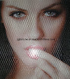 Eco-Disolvente / Disolvente de una sola manera Vision Window Film