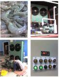 200 طن [كلد رووم] مشروع [كلد رووم] مبرد ([ليو])