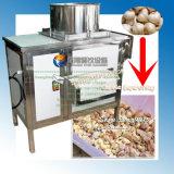 Fx-139 automático de acero inoxidable ajo separación de la máquina, máquina de procesamiento de ajo