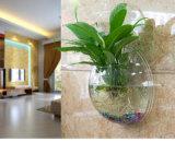 鏡面様式のアクリルの円形の壁に取り付けられたハングの魚ボール