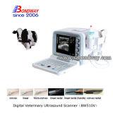 Varredor veterinário do ultra-som 4D dos instrumentos