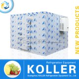 Koller Brand Highquality Cold Storage Bin/Walk en Freezer