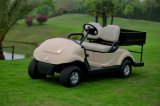 2 Passengers (를 위한 Cargo Box를 가진 Dongfeng Electric Golf Cart EQ9022 (C1))