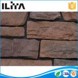 La pietra della parete, rivestimento della parete di pietra, spuma parete di pietra (YLD-92009)