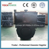 300kw中国のPermanent Magnet Brushless OEM Alternator Generator