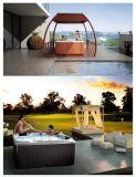 屋外の新しいデザイン小さい温水浴槽のジャクージ(M-3375)