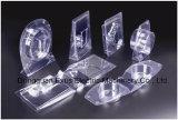 Spitzenmarken-Qualitäts-automatische Plastikbildenmaschine für die Wegwerfverpackentellersegment-Herstellung