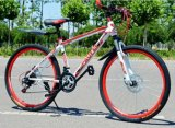 Bici piegante di alta qualità MTB da vendere