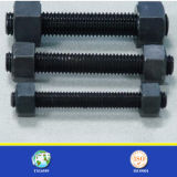 Thread grosseiro Fine Thread Unc Unf Thread Hex Bolt e Nut