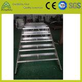 Fase esterna dell'alluminio del compensato di illuminazione di prestazione
