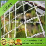 Réseau d'oiseau de jardin de fruit de compensation de polyéthylène de vigne anti