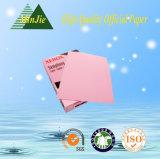 Carta da stampa variopinta ecologica 70g per la m/c inclusa della stampante