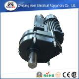 750W AC monofásico de inducción eléctrica motorreductor de par del motor de accionamiento directo desde el mezclador de concreto y mezclador de cemento