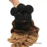 "22 ""人間のVirgin Hair Extension Ombre 3tone Wave Hair"