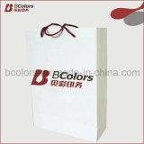 Colorer le logo se pliant d'impression de sac de papier d'achats