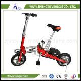 電気バイクを折っているShengteの安いライト級選手