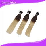 2着色されたOmber 100%年のPhilipinoのバージンのRemyの毛の拡張よこ糸(ST-113)