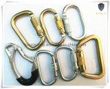 Metallo Carabiner (DS22-2) degli accessori del cavo di sicurezza