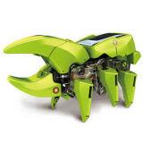1개의 변형시키는 태양 로봇 장비에 대하여 10210648 4