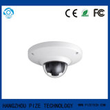 Vigilancia de seguridad Fisheye Network IP Camera