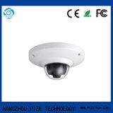 監視のVandal-Proof Fisheyeネットワークカメラ