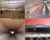 Automatischer Lehm-Ziegelstein, der Pflanze mit Tunnel bildet