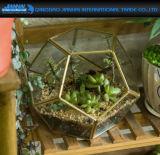 Vaso geometrico della pianta del supporto dell'indicatore luminoso del tè della candela del Terrarium della piramide
