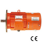 0.55-90kw 4ポーランド人の頻度Varied Electric Motor (YVF2 80)