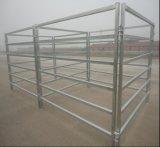 호주 정연한 관 40X40mm 말 가축 우리 위원회 또는 양 야드 위원회