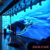 Miet-LED-Bildschirm/Innenvideo LED-Bildschirmanzeige (druckgießendes Aluminiumpanel)