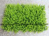 Erba di plastica sintetica falsa artificiale di vendita calda della fabbrica