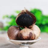 Gegorener Bestes gekennzeichneter organischer vollständiger schwarzer Knoblauch 900g