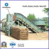Prensa horizontal da palha para a planta da biomassa (HFST8-10)