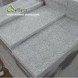 Azulejo de suelo flameado gris claro del granito G603 para el material de construcción