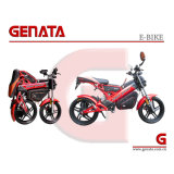 (Patented) Lithium Battery Electric Motorcycle (GM890E)