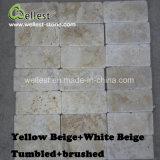Suelo multi del color del travertino natural de Wellest que pavimenta el azulejo decorativo de la piedra de la pared del modelo de la pared del azulejo