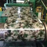 Feuille galvanisée par acier de Prited de modèle enduite d'une première couche de peinture en acier dans la bobine