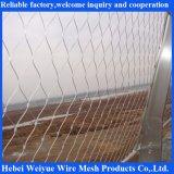 La rete del cavo dell'acciaio inossidabile del grado 316, la maglia della corda dell'acciaio inossidabile, X tende la maglia