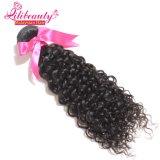 100%加工されていないRemyの人間の毛髪のマレーシアの毛の束