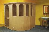Stanza unica di sauna di disegno di figura (M-6004)