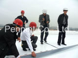 Best Quality 1.2mm 1.5mm Tpo Roofing Material Waterproof Membrane