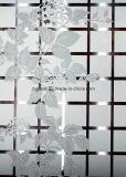 Zuur Dorative Glas, Berijpt Glas voor Venster, Deur 3mm6mm