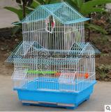 Qualitäts-Puder, das Minivogel-Rahmen beschichtet