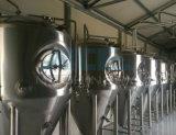Cerveza Minicervecería cerveza de la barra equipo de elaboración Casa (ACE-FJG-K6)