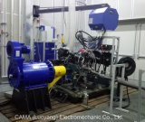 Banc d'essai de performance de moteur à essence / diesel